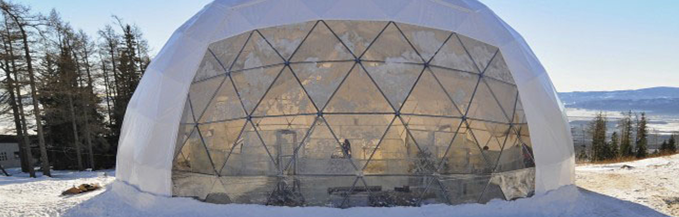 Geodesic Dome- NY USA
